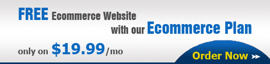 Free Ecommerce website with our Ecommerce plan